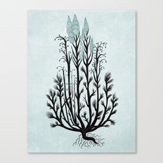 Plant with Blue Flowers Canvas Print