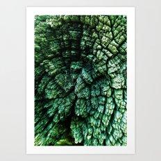 TENNESSEE BACK HILLS Art Print