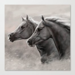 Two Horses Painting Gift Black Stallions                                          Canvas Print