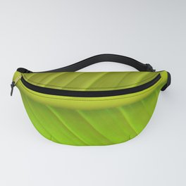 Green Arc Fanny Pack