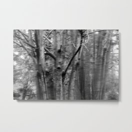 small branch Metal Print
