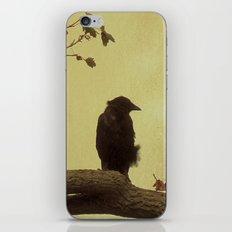 Old Crow iPhone & iPod Skin