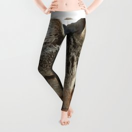 Stunning Tabby Cat Close Up Portrait Isolated Leggings