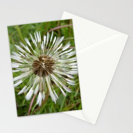 Dandelion In The Rain Stationery Cards
