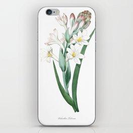 HIGHEST QUALITY botanical poster of Tuberose iPhone Skin