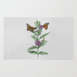 Monarch Butterfly Life Cycle Rug