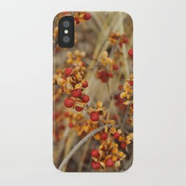 Fall's End iPhone Case