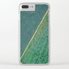 the symmetries of the field Clear iPhone Case