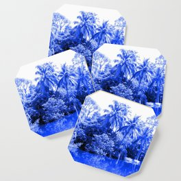 Florida in Blue Coaster