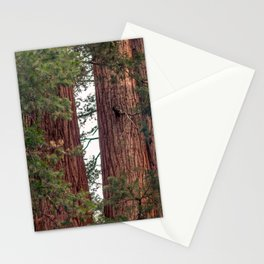 Find Your Soul Stationery Cards