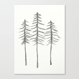 Pine Trees Pen and Ink Illustration Canvas Print