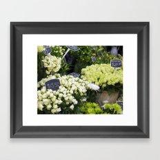 Premium Roses Framed Art Print