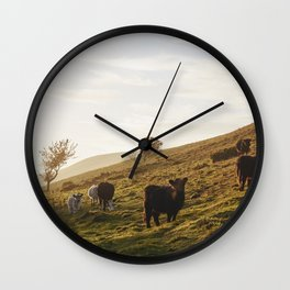 Cattle grazing on mountainside. Derbyshire, UK. Wall Clock