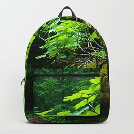 A path to an adventure Backpack