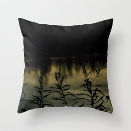 La domaine howard Throw Pillow