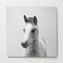 Baby Horse - Black & White Metal Print