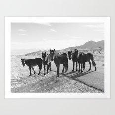 Cold Creek Horse Crew Art Print