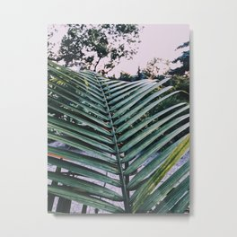 Palm in the North Metal Print
