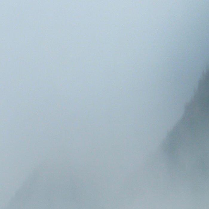 Foggy British Columbia Leggings