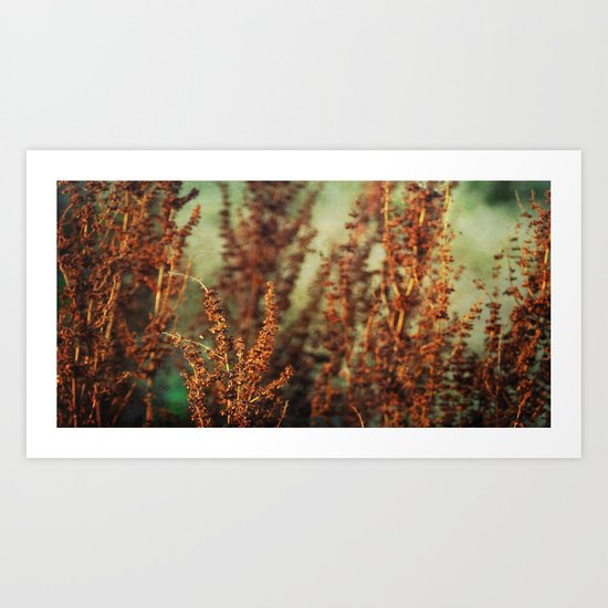 autumnal impression Art Print