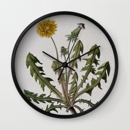Botanical Dandelion Wall Clock