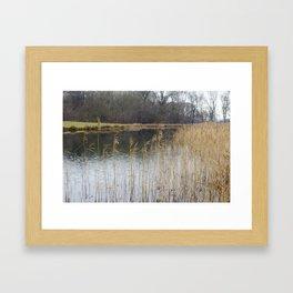 Winter at the Lake Framed Art Print