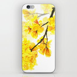 yellow trumpet trees watercolor yellow roble flowers yellow Tabebuia iPhone Skin
