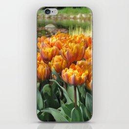 Les Tulipes iPhone Skin