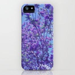 Purple Jacaranda iPhone Case