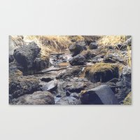 rocky Canvas Prints featuring Rocky  by Justin Clayton Photography