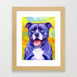 Colorful American Pitbull Terrier Dog Framed Art Print