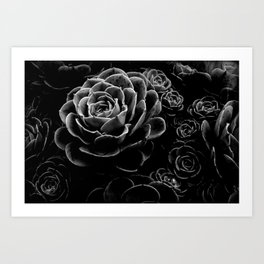 Succulents in the Shadows Art Print