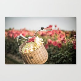 Vintage bicycle flower basket Canvas Print