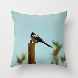 Evening Song Throw Pillow