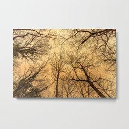 Naked trees silhouette, orange sky Metal Print