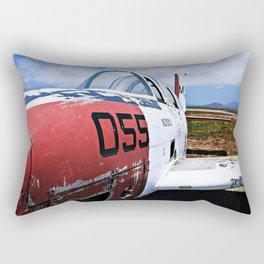 055 Rectangular Pillow