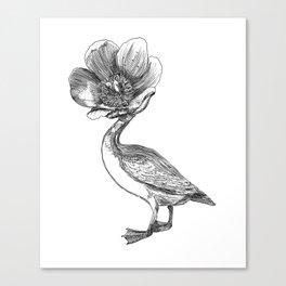 Pato cabeza de flor / Duck with flower head Canvas Print