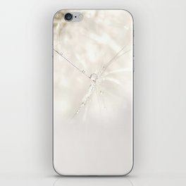 Sparkling dandelion seed head with droplet iPhone Skin