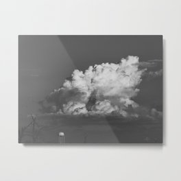 222 | bastrop state park Metal Print