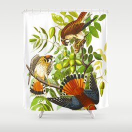 Sparrow Vintage Scientific Bird & Botanical Illustration Shower Curtain