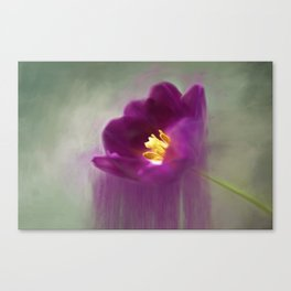 Purple Tulip Art Canvas Print