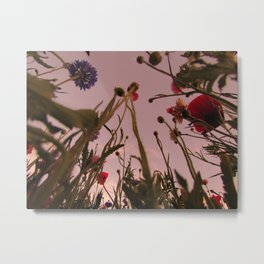 Wildflower Sunsets #4 Metal Print