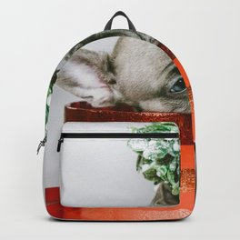 Christmas Pup in a Present with Mistletoe (Color) Backpack