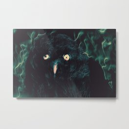 Northern Night Metal Print