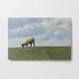 Sheep on the Hill Metal Print
