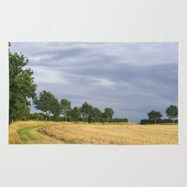 Rainclouds over treelined stubbled field. Norfolk, UK. Rug