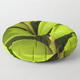 Vegetable balance - Green design Floor Pillow
