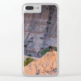 Wild Turkey in the Badlands Clear iPhone Case