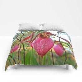 Lady Slipper Side Comforters