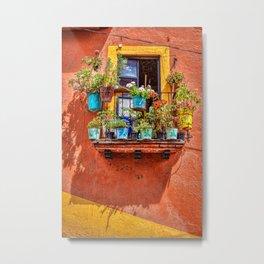 Small Suspended Garden In Guanajuato Metal Print